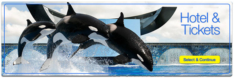 Book Your Vacation with SeaWorld San Diego
